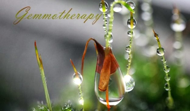 Gemotherapy