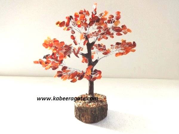 Red Carnelian Tree with Thick Root